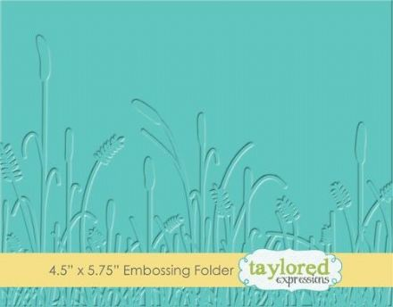 TEEF27 ~ PRAIRIE ~ Embossing folder ~ Taylored Expressions